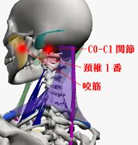 新宿のアオイカイロで顎関節症や顎の痛みの治療
