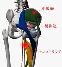 新宿・代々木で骨盤矯正や体の歪みの改善治療