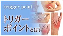 トリガーポイントとは?肩こり、腰痛、背中、肩甲骨、坐骨神経痛のトリガーポイント治療の症例